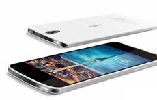 NewBerry Plum V908